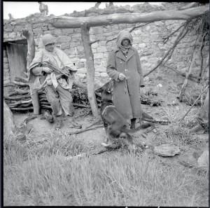 Suspect sous la surveillance d'un soldat et d'un chien lors d'une opération militaire dans l'Aurès, Algérie, 24 avril 1955 © ECPAD / Claude Cuny