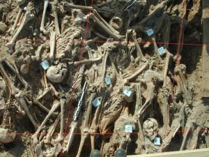 Vue zénithale de la couche supérieure des inhumations de la partie Est de la fosse. Ce cliché objective le grand nombre de corps inhumés, la simultanéité des dépôts (pas de sédiment entre les individus). Il montre également l'urgence ayant prévalu aux inhumations avec des corps déposés tête-bêche, et des positionnements très divers (position des bras du sujet n° 50, cadavre inhumés face contre terre...) © UMR 7268 ADES AMU-EFS-CNRS