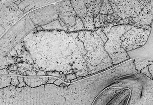 """Verdun épisode 7-3 : Niveau de détail permis par la technologie LiDAR - © Verdun """"Forêt d'exception"""" - mission Lidar DRAC"""