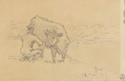 MA BA Animaux 1803 506x330 Animals and war, episode 17 : The Cow and The Bull